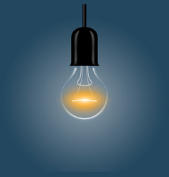 A realistic electric light bulb hanging from the vector
