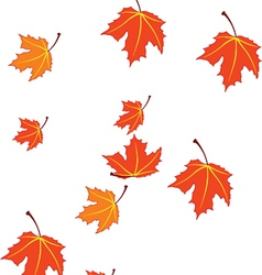 Autumn leaves isolated on white vector