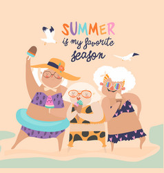 Cute funny old ladies with ice cream vector