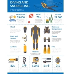 Diving And Snorkeling Infographics vector