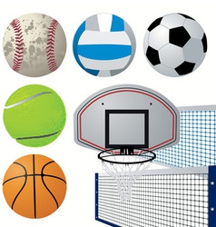 detailed sports equipment set vector image