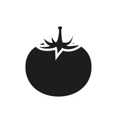 tomato fruit vector image