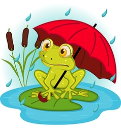 Frog under umbrella vector