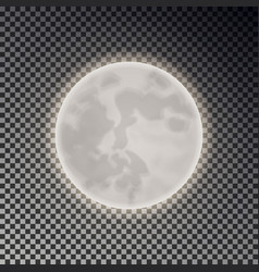 Full white moon isolated dark night sky backgroun vector