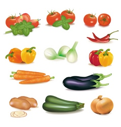 Group vegetables vector