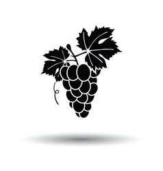 Icon grape vector