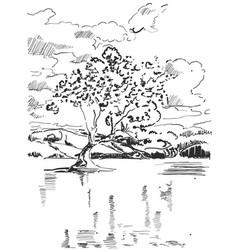 Landscape sketch tree near the lake vector