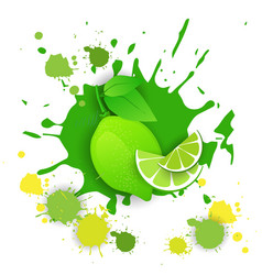 Lime fruit logo watercolor splash design fresh vector