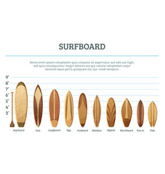 set of different hawaiian surfboards vector image
