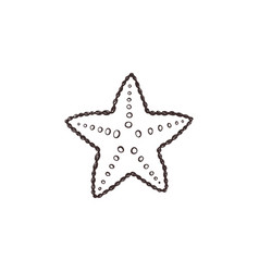 Starfish sketch collection vector