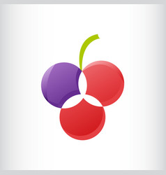 three circle flower or fruit logo gradient color vector image
