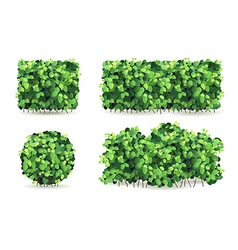Set of bushes vector image vector image