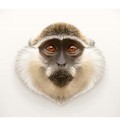 Monkey head realistic vector image vector image