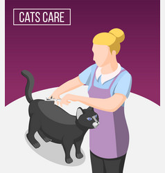 cats care isometric background vector image