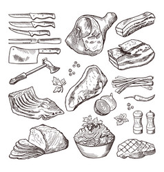 Different meat food pork bacon and kitchen vector