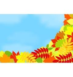 Frame of autumn leaves against the sky vector