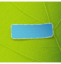 green leaf texture vector image