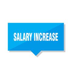 salary increase price tag vector image