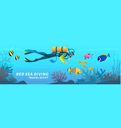 Travel egypt cartoon banner red sea diving poster vector