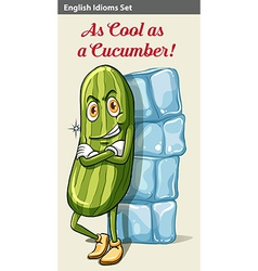 A cucumber beside the icecubes vector
