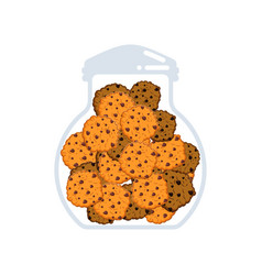 cookies in jar isolated oatmeal cookie in glass vector image