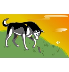 Husky and mouse vector image
