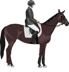 jockey on a horse vector image