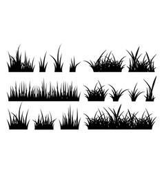 monochrome grass vector image