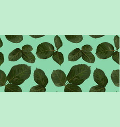 Pattern of green leaves of rose watercolor vector