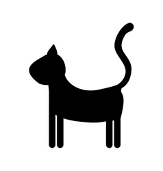 Pet cat icon image vector