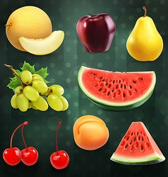 Summer fruits set of on dark background vector image
