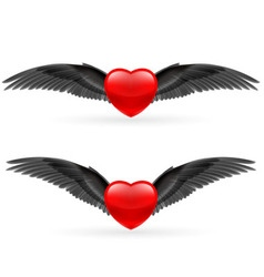 Two hearts with wings vector image