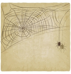 Vintage background with spider web vector image