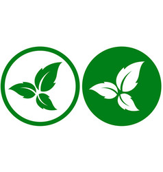 eco icons with leaves vector image vector image