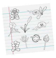 flower on paper vector image vector image