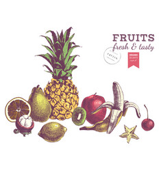 hand drawn juicy fruits colorful border vector image vector image