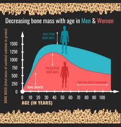 Decreasing bone mass vector