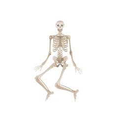 flat funny human skeleton dancing icon vector image