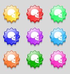 Skull icon sign symbol on nine wavy colourful vector image