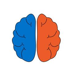 flat color line brain icon vector image