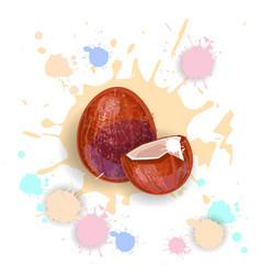 coconut fruit logo watercolor splash design fresh vector image