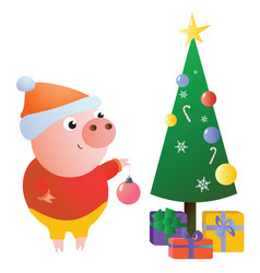 cute funny piggy decorates the christmas tree vector image