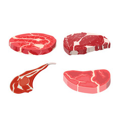 Meat steak collection vector