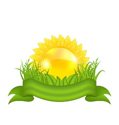 Nature symbols - sun green leaves grass ribbon vector image