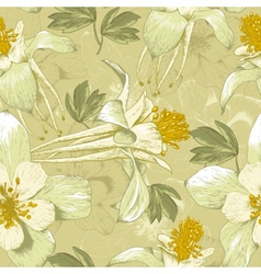 Seamless Floral Background with White Flowers vector image