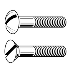 Vector illustration of screws vector