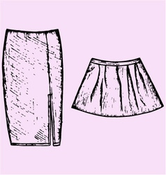 womens skirt vector image