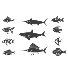 Grey fish silhouettes set vector image vector image