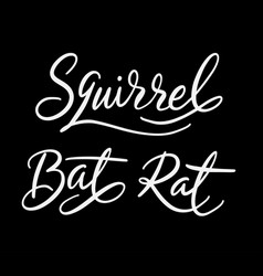 squirrel animal hand written typography vector image