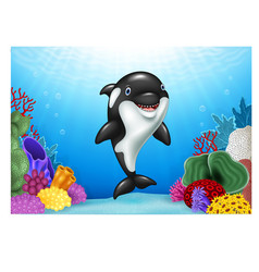 Cute orca with beautiful underwater world vector